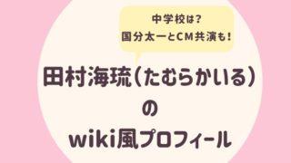田村海琉のwiki風プロフィール3
