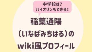 稲葉通陽のwiki風プロフィール2