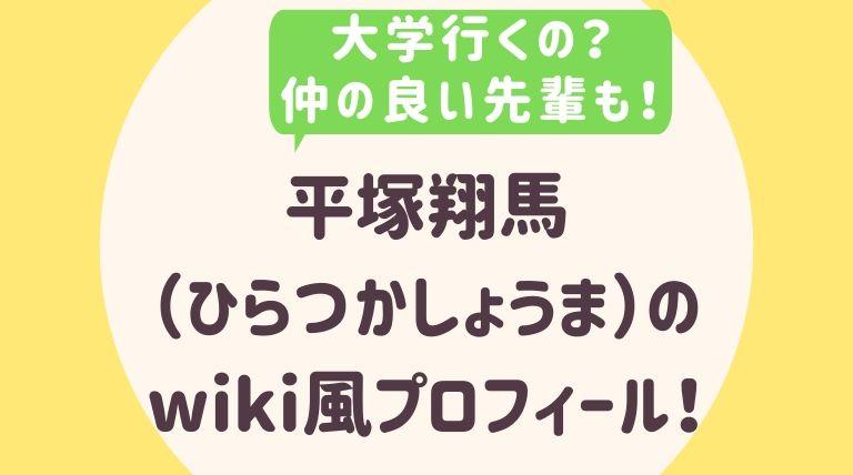平塚翔馬のwiki風プロフィール2
